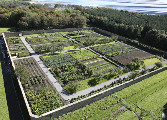 Kitchen garden lissadell house online for House and garden kitchen photos