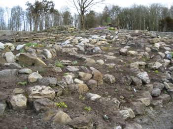 Part of the rockeries just after planting