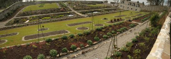 A panoramic view of the top half of the garden from the back wall in April 2008 (Viera)